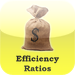 Efficiency Ratios Calculator for CPAs, Investment Bankers, Finance Pro